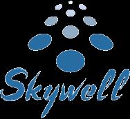 Скайвелл ИТ интегратор